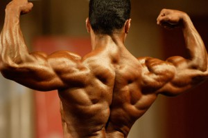 Use the back exercises to build great lat muscle