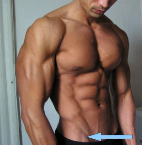 Obliques running up the side of the abs