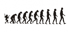 If we can evolve from monkeys, surely we can change our body shape!